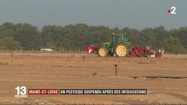 Maine-et-Loire : un pesticide suspendu après des intoxications