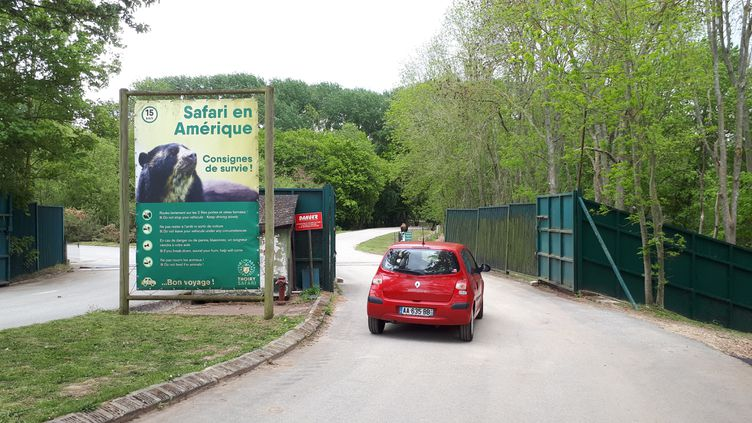 Le zoo de Thoiry (Yvelines) a rouvert ses portes mercredi 12 mai 2021, pour les safaris uniquement. (Theo Boscher / RADIO FRANCE)