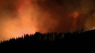 Dans le sud de l'Europe, il y a de fortes chaleurs. Le Portugal se place même en état d'alerte pour le troisième été consécutif. Le centre du pays est ravagé par un important incendie. (France 3)