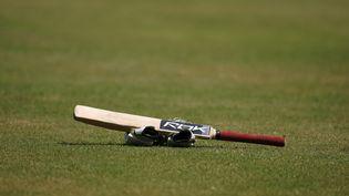 Une batte de cricket sur le terrain du stade de Saint Johns (Antigua-et-Barbuda), le 31 mars 2007. (TIM WINBORNE / REUTERS)