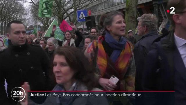 Pays-Bas : l'État condamné pour inaction climatique