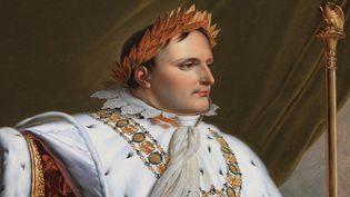 Napoléon 1er par Anne-Louis Girodet (Château de Fontainebleau)  (Manuel Cohen)