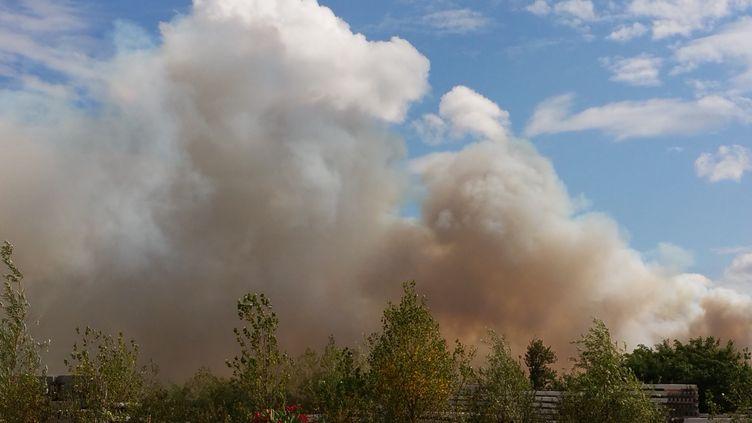 Un incendie s'est déclaré à Saint-Jean-d'Illac (Gironde), près de Bordeaux, le 24 juillet 2015. (SYLVIE DELAUNAY / CITIZENSIDE / AFP)