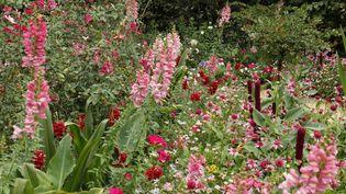 """""""Le jardin Bouquetier"""" réalisé par les jardiniers du Domaine de Chaumont-sur-Loire dans le cadre du festival des jardins  (E. Sander)"""