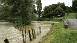 La commune deBourbonne-les-Bains (Haute-Marne), le 13 juillet 2021. (ALAIN DELPEY / HANS LUCAS / AFP)