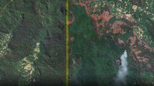 Entre le 16 octobre et le 21 novembre 2019, la Réserve naturelle de Whian Whian(Australie) a été ravagée par les incendies. (PLANET LABS / FRANCEINFO)