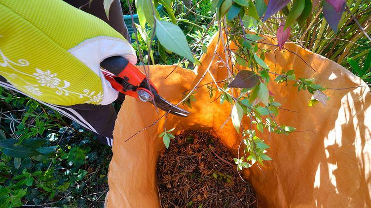 Coupez les branchages en tout petits morceaux pour obtenir un super paillage. (ISABELLE MORAND / DIDIER HIRSCH / RADIO FRANCE / FRANCE INFO)
