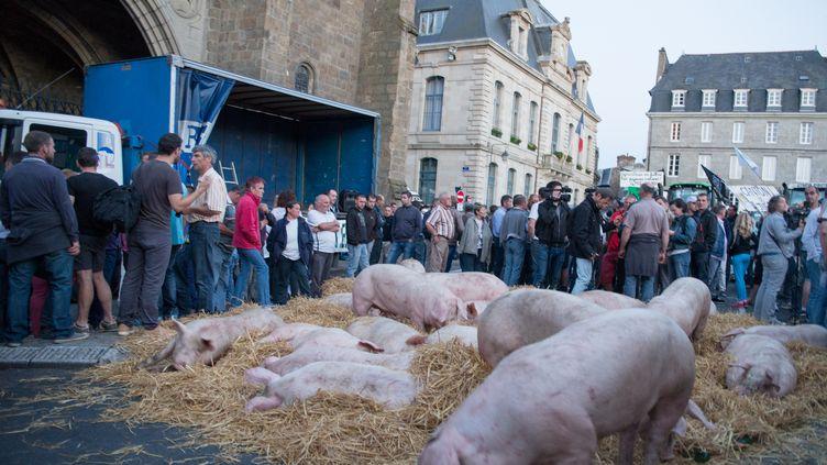 Des éleveurs et agriculteurs bretons manifestent devant la préfecture de Saint-Brieuc le 2 juillet 2015. (CITIZENSIDE / EMMANUELLE RODRIGUE / CITIZENSIDE.COM)