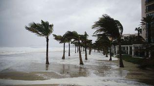 Une plage de Los Cabos, au Mexique, à l'arrivée de l'ouragan Odile. (VICTOR R. CAIVANO / AP / SIPA)