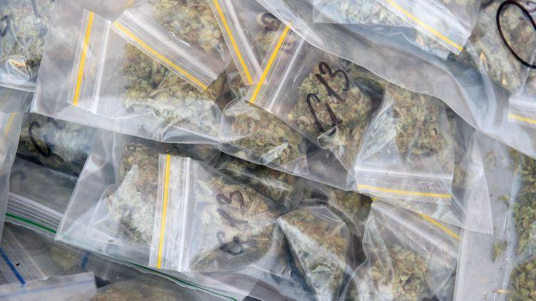Du cannabis saisi à Marseille (Bouches-du-Rhône) est exposé lors d'une visite du ministre de l'Intérieur, le 25 février 2021. (NICOLAS TUCAT / AFP)