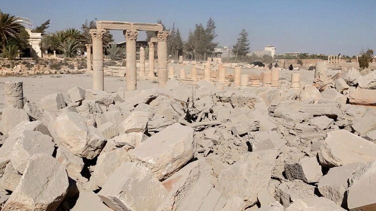 Palmyre, août 2015  (Welayat Homs/AFP)