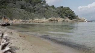 L'île de Porquerolles, petit bout de terre au large de Hyères (Var), où le vélo est roi, est une destination dépaysante. (FRANCE 3)