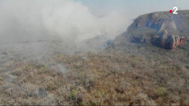 Amazonie : un incendie hors de contrôle