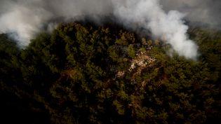 Une vue aérienne d'un feu de forêten Turquie, le 4 août 2021. (SULEYMAN ELCIN / ANADOLU AGENCY / AFP)