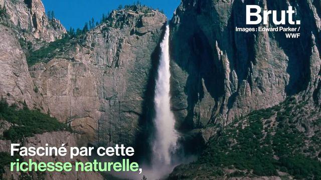 Il a consacré sa vie à la protection de la nature. Plus de 100 ans après sa mort, ce pionnier de l'écologie continue d'inspirer. Voici la vie de John Muir.