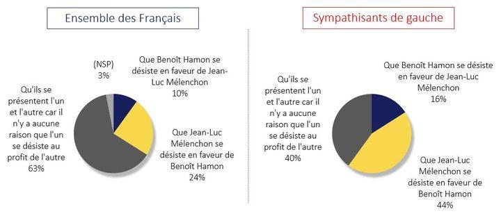 60% des sympathisants de gauche, et 40% des Français préféreraient une candidature unique à gauche pour la présidentielle. (Odoxa pour franceinfo)