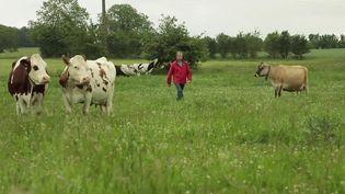 Aides : la colère des agriculteurs bio (FRANCE 2)