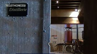 Armagnac (FRANCE 3)
