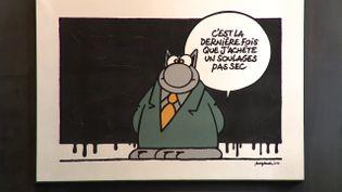 """L'exposition """"Le Chat visite le musée Soulages"""", prolongée jusqu'au 26 septembre 2021. (CAPTURE D'ÉCRAN FRANCE 3 / C. ALET)"""