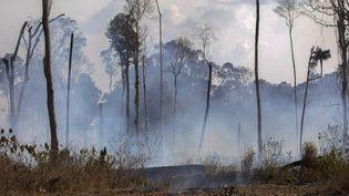De la fumée s'échappe d'un feu près de Novo Progresso, dans l'Etat du Para, au Brésil, le 25 août 2019. (JOAO LAET / AFP)