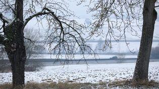 Le Bas-Rhin est touché par la neige et le verglas, le 8 janvier 2017. (MAXPPP)