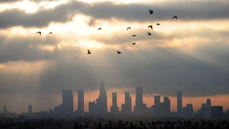 Le ciel de Los Angelesle 14 décembre 2011. La Californie a la plus mauvaise qualité de l'air des Etats-Unis. (FREDERIC J. BROWN / AFP)