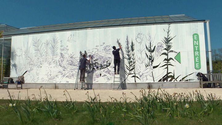 Nefase et Kero en plein chantier street art sur les serres des Jardins suspendus du Havre (France 3 Normandie)