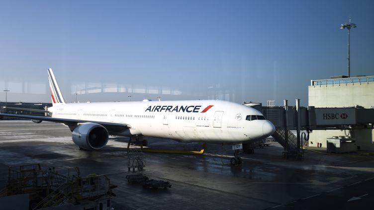 Un avion de la compagnie Air France, à l'aéroport de Roissy-Charles-de-Gaulle, le 20 janvier 2017. (Photo d'illustration) (BERTRAND GUAY / AFP)