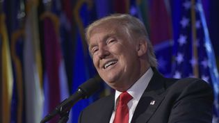 Le président élu des Etats-Unis, Donald Trump, lors d'un discours lors de la nuit de l'élection, le 9 novembre 2016 à New York (Etats-Unis). (MANDEL NGAN / AFP)