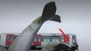 Rotterdam : une queue de baleine géante sauve un métro qui avait déraillé (FRANCEINFO)