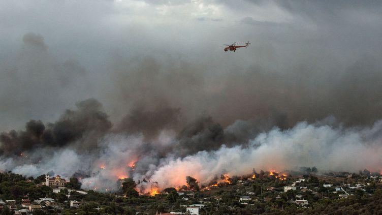 Un incendie près de Rafina, proche d'Athènes, en Grèce, le 23 juillet 2018. (ANGELOS TZORTZINIS / AFP)