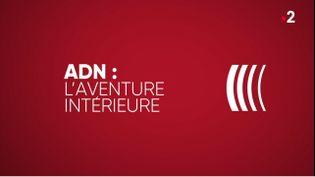 16 avril 2020 ADN : l'aventure intérieure (COMPLÉMENT D'ENQUÊTE / FRANCE 2)