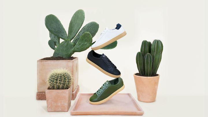 Sneaker en cuir de cactus de la marque Clae (Clae)