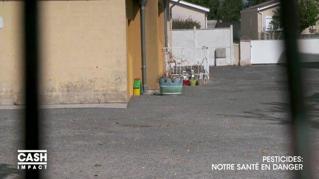 VIDEO. Des pesticides interdits utilisés autour d'écoles dans le Médoc
