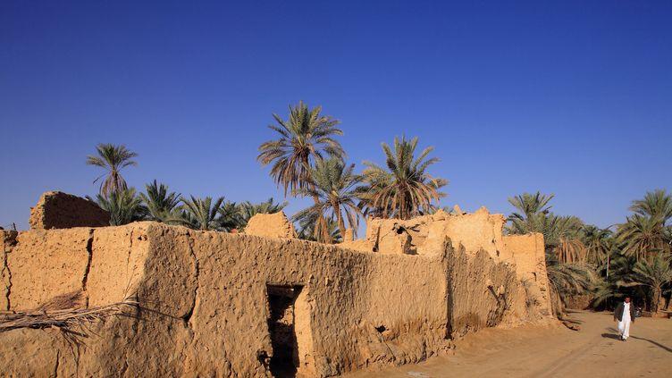 Située dans une dépression rendue fertile par le jaillissement de quelques centaines de sources, Siwa est en bordure directe du plateau du désert libyque. L'oasis est aujourd'hui visité par une majorité d'Egyptiens, alors que qu'auparavant les touristes étaient essentiellement étrangers. La crise politique est passée par là. (ORTEO LUIS / HEMIS.FR / AFP)
