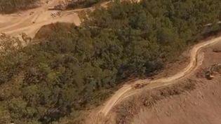 Durant les derniers mois, de gigantesques feux ont ravagé l'Australie, dévastant des millions d'hectares. Mais les éleveurs et les agriculteurs détruisent eux aussi la végétation et la faune en abattant des arbres pour créer des pâturages. (FRANCE 2)