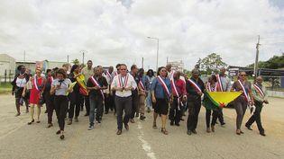 Marche des élus de Guyane le 25 mars 2017 à Kourou. (LAURENT MARIMOUTOU / MAXPPP)
