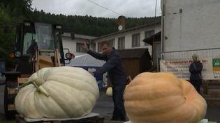 Foire des légumes géants en Allemagne. (France  TV)