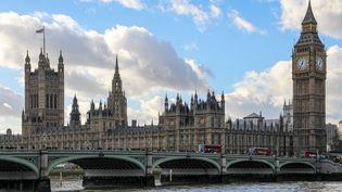 Le palais de Westminster à Londres, le 11 janvier 2014. (DANIEL KALKER / DPA / AFP)