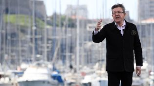 Jean-Luc Mélenchon lors de son meeting de campagne sur le Vieux-Port de Marseille, le 9 avril 2017. (ANNE-CHRISTINE POUJOULAT / AFP)