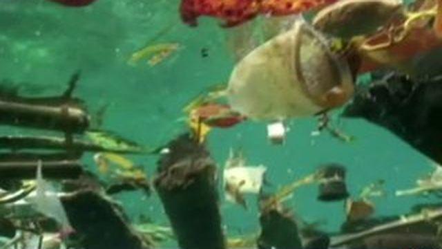Pollution : 288 millions de tonnes de déchets flotteraient en mer