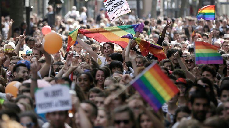 Lors de la Marche des fiertés, à Paris, le 30 juin 2013. (MAXPPP)