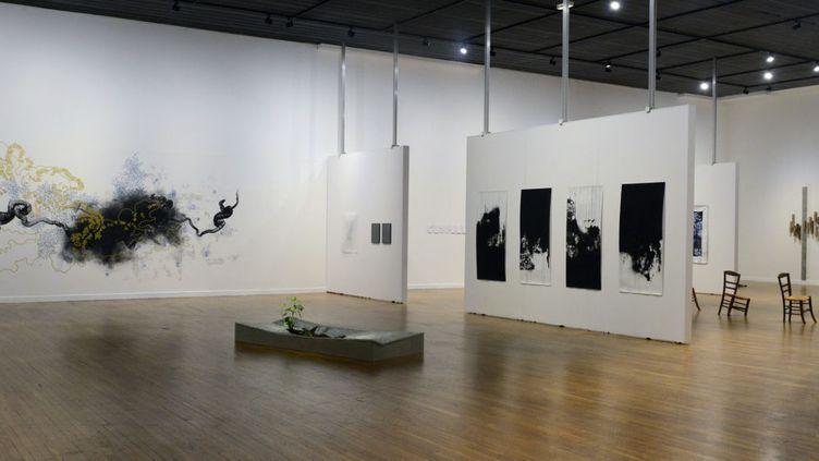 """L'exposition """"Paysages cassés"""" à la Maison de la Culture d'Amiens  (Sylvie Gosselin )"""