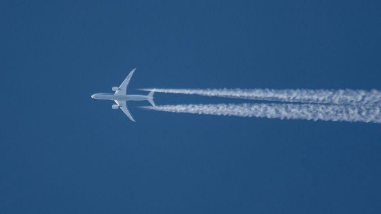 Le trafic aérien a chuté de 54% en 2020, à cause de l'épidemie de Covid-19. (NICOLAS ECONOMOU / NURPHOTO / AFP)