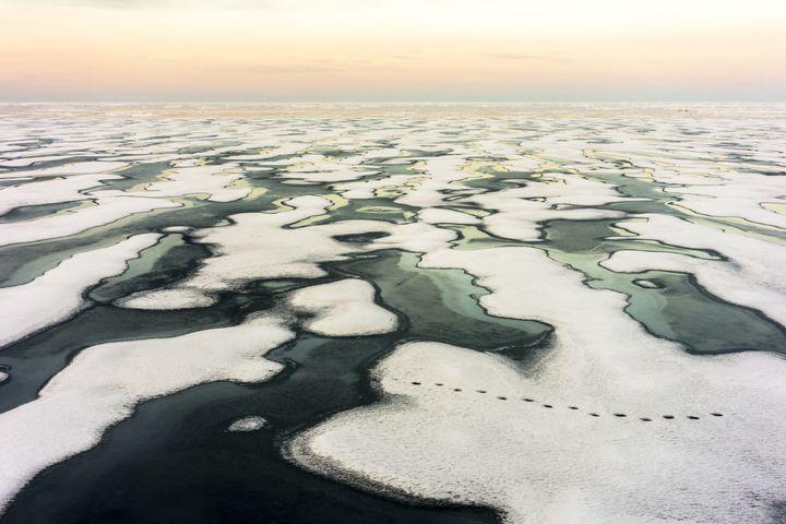De la glace brisée dans le nord du Canada, le 4 mars 2019. (RAPHAEL SANE / BIOSPHOTO)