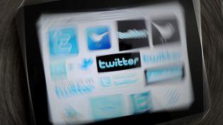 Des internautesfrançais et étrangers ont fait suspendre un compte pédopornographique sur Twitter, le 9 août 2012. (FRANK MAY / MAXPPP)
