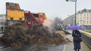 Des agriculteurs déversent du fumier dans une rue de Boulogne-sur-Mer (Pas-de-Calais), le 2 février 2016. (MAXPPP)