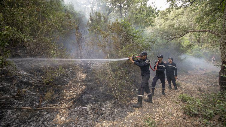 Les pompiers sur le front des incendies à proximité du village de Hammam Bourguiba, dans la province de Jendouba, Tunisie, le 11 août 2021. (YASSINE GAIDI / ANADOLU AGENCY)