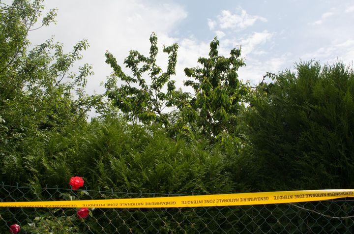 Le cerisier dans le jardindela maison abandonnée où Tom, 9 ans, a été retrouvé lundi 28 mai, auHérie-la-Viéville (Aisne). (MATHILDE GOUPIL / FRANCEINFO)