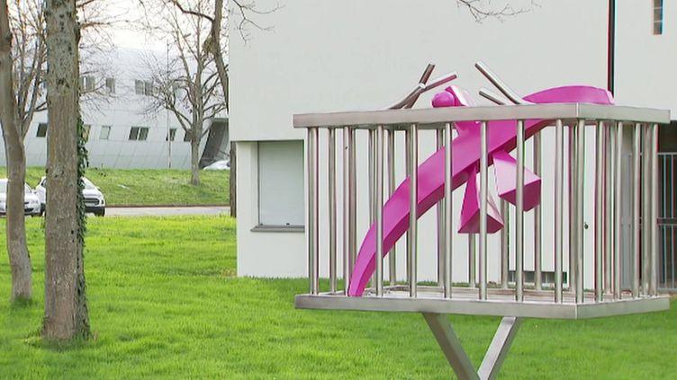 Le clitoris fait son grand retour sur le campus de Poitiers (S. Hamon / France 3 Poitou-Charentes)